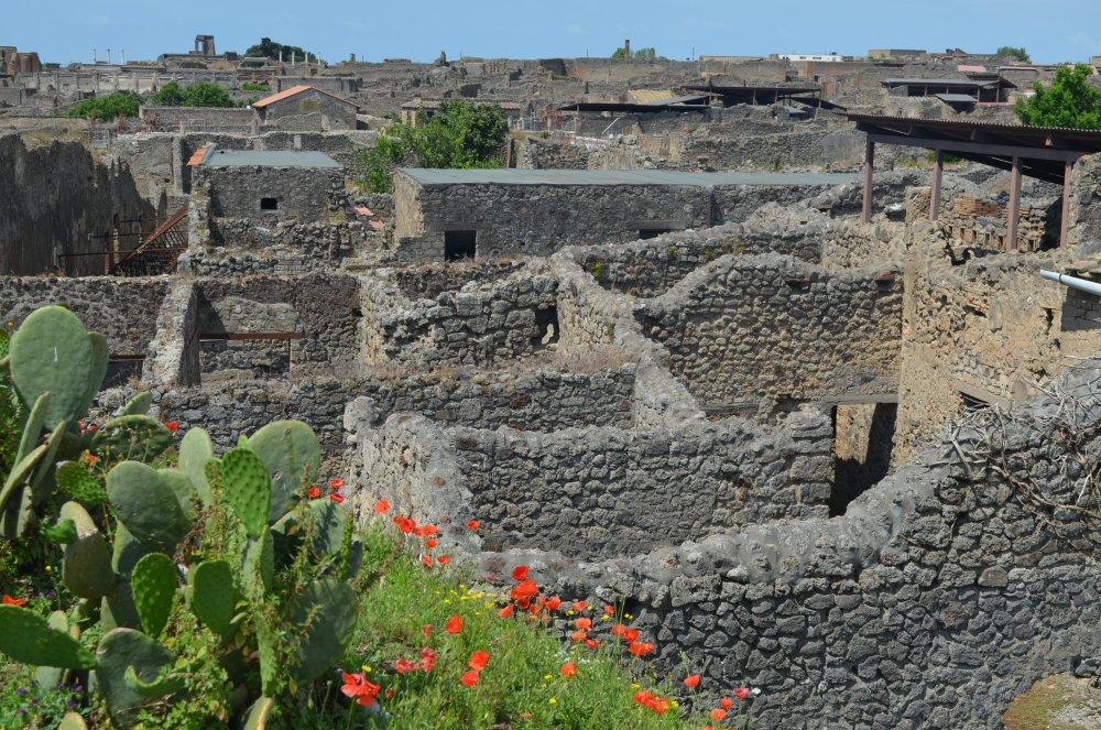 Pompei - Orasul ingropat in lava si cenusa