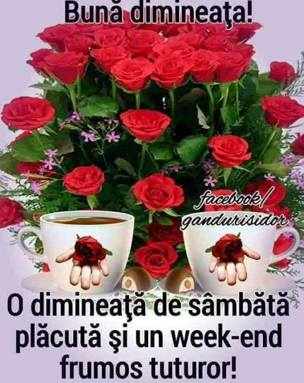 FB_IMG_1515835240499.thumb.jpg.3ddccfb2167d9a30d7da18d66b60e56d.jpg