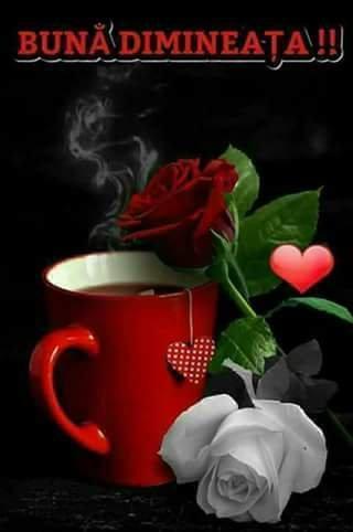 FB_IMG_1518504983997.jpg
