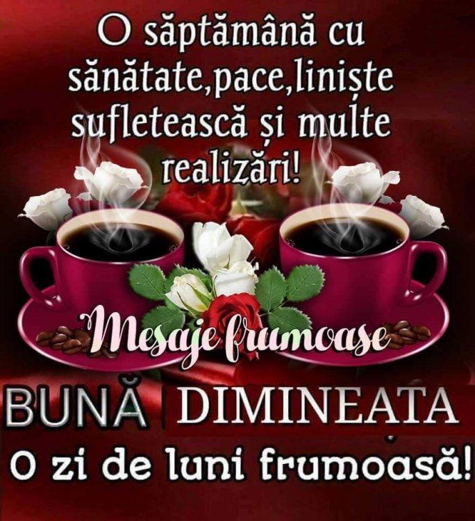FB_IMG_1520835085711.jpg