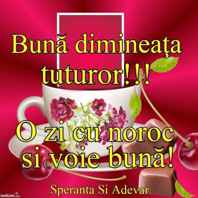 FB_IMG_1520923179755.jpg