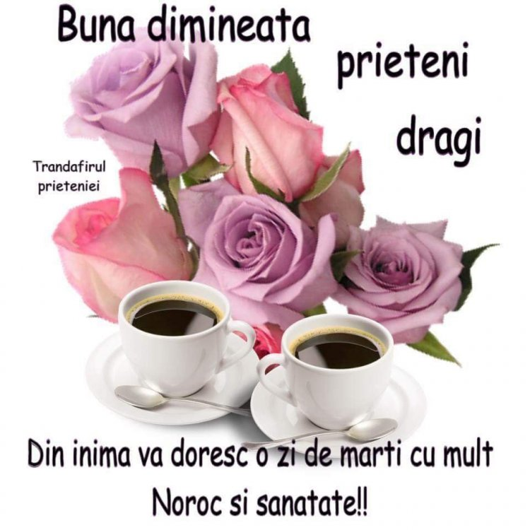 FB_IMG_1531808774577.jpg