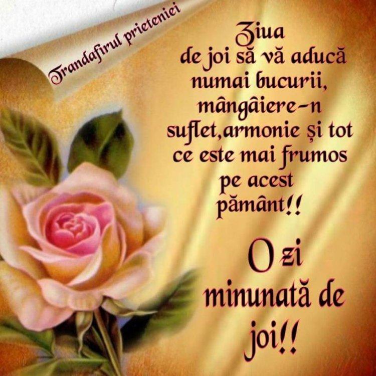 FB_IMG_1531987624290.jpg