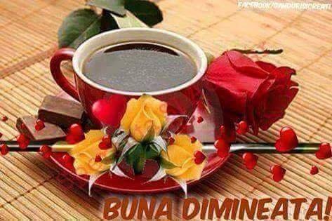 FB_IMG_1532064986107.jpg