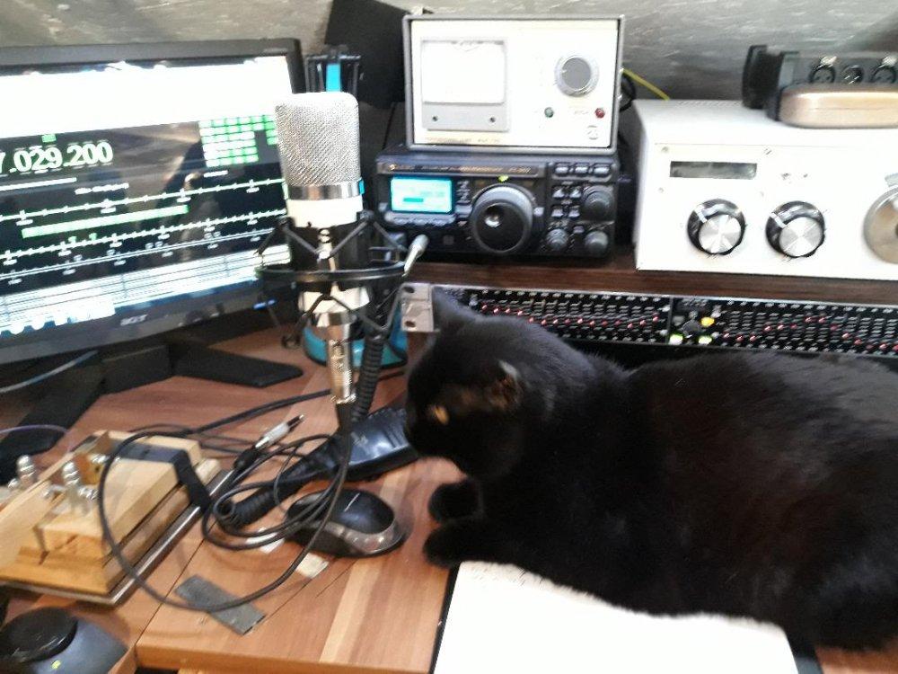 niste radio.jpg