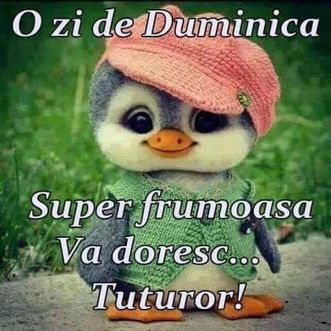 duminica-frumoasa-105_85f88ec675a810.jpg