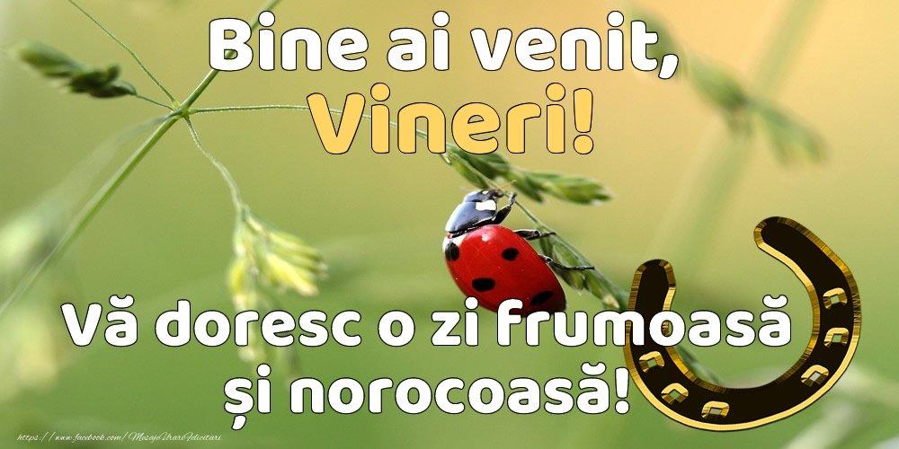 vineri-395.jpg