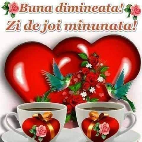 FB_IMG_1557899098928.jpg
