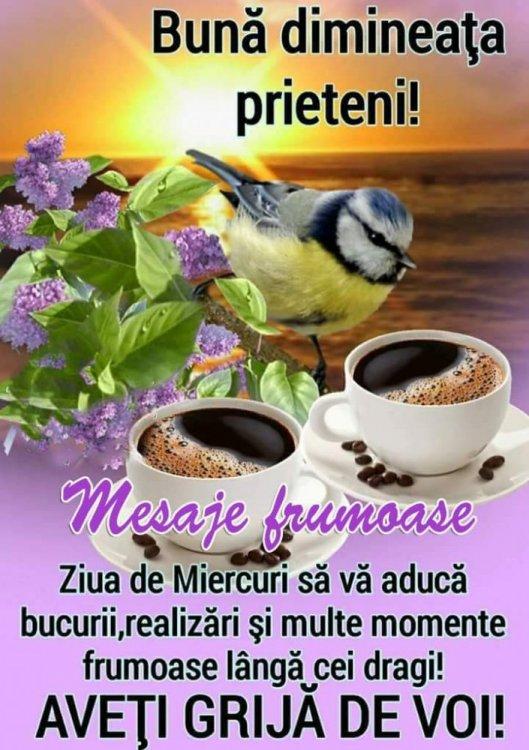 FB_IMG_1560320699204.jpg